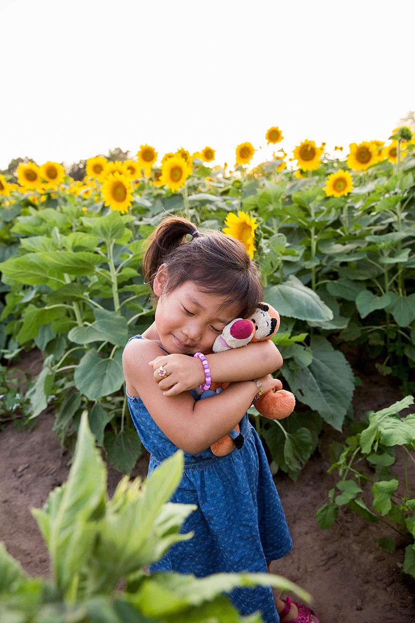 Leavenworth, Kansas family photographer, sunflower