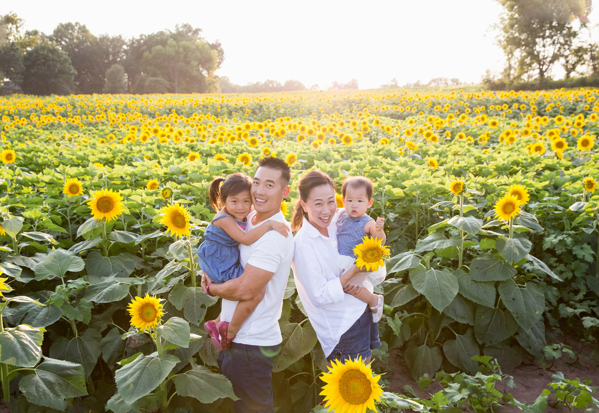 Leavenworth, Kansas family photography, sunflower session